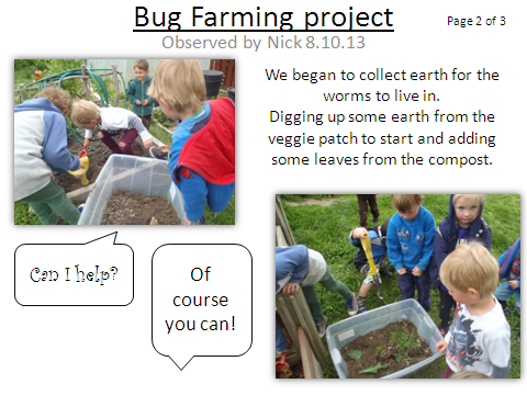 Bug Farming Project